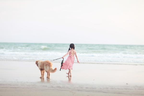 可爱小女孩在海边玩,牵着大只狗的皮肤