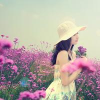 带点唯美景色的头像:春风得意,在享靓丽之时分