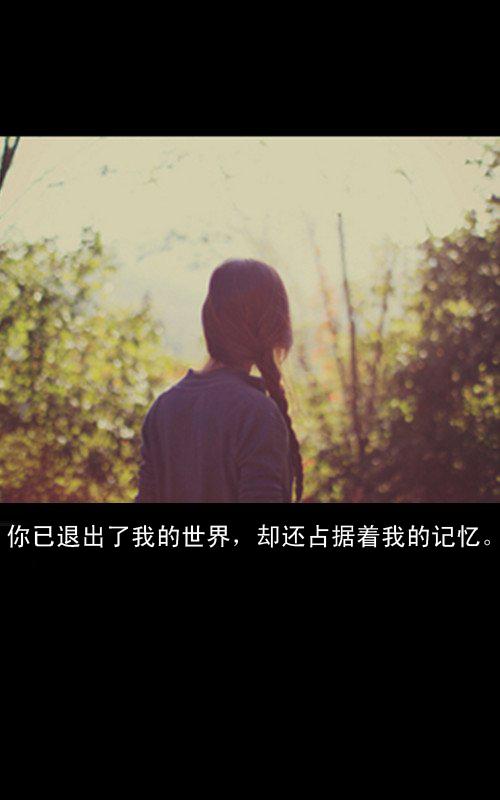 慢慢地习惯了一个人的生活,变得沉默,变得冷落,没了想理,不想说,不想图片